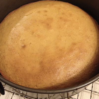 Undressed ginger sponge