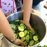 Salty cukes. Soon to be pickles.