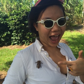 Classic Australian cicada-shell accessories.
